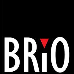 Brio Bodywear logo